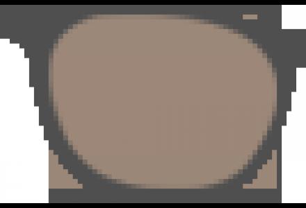 Lunettes de soleil Brun